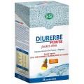 DIURERBE FORTE  PIÑA POCKET DRINK 24 SOBRES