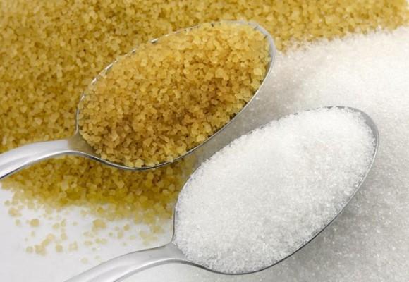 Mundo dulce, el azúcar y otros edulcorantes